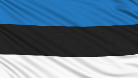 Estonia flag, with real structure of a fabric Animation