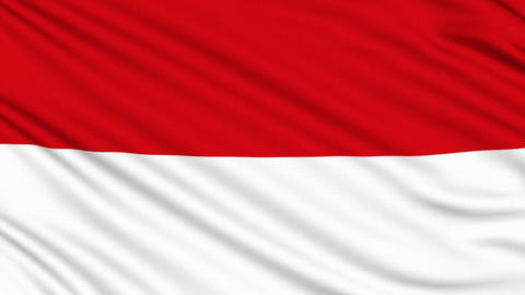 Indonesia flag, with real structure of a fabric Animation