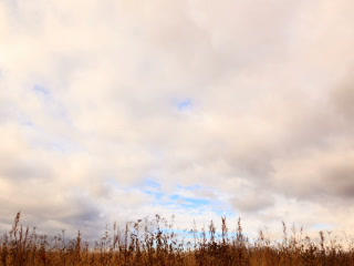 Clouds Over Dry Grass. From Bottom To Top. Time La stock footage
