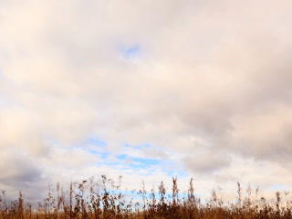 Clouds over dry grass. Panarama. Time Lapse. 320x2 Footage