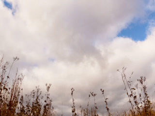 Clouds over dry grass. Fisheye lens Time Lapse. 32 Footage