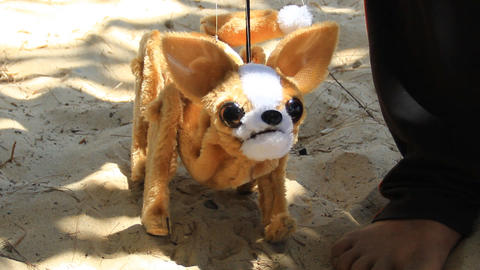 Chihuahua Rod Marionette 2
