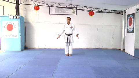 Man Performing Martial Arts stock footage