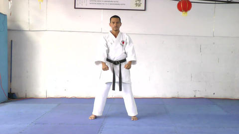 Black belt in position to defend and attack Footage
