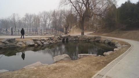 China Beijing Park Yuanmingyuan 18 Footage