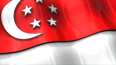3D flag, Singapore Animation
