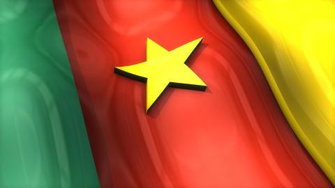 3D flag, Cameroon Animation