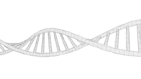Human DNA Wireframe stock footage