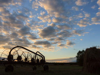 Tractor rake at sunset. Time Lapse. 320x240 Footage
