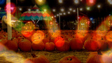 Autumn Festival Pumpkins Carnival Lights stock footage
