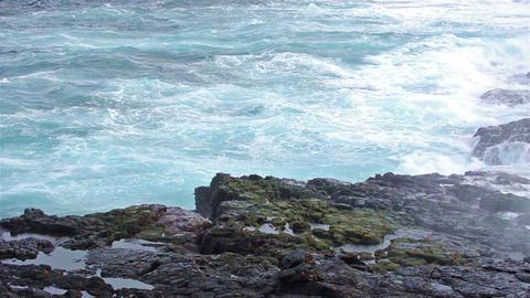 Saltwater blowhole at Punta Suarez on Espanola Isl Footage