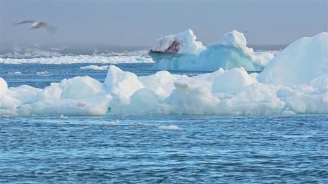 Real time flow of sea ice floating past grounded i Footage