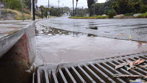 Water flowing down a street gutter into a storm dr Footage
