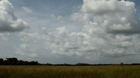 Time lapse of clouds over the Everglades Footage