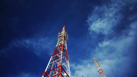 Birds Swarming Radio Cellular Tower stock footage