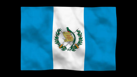 Flag A081 GTM Guatemala Stock Video Footage