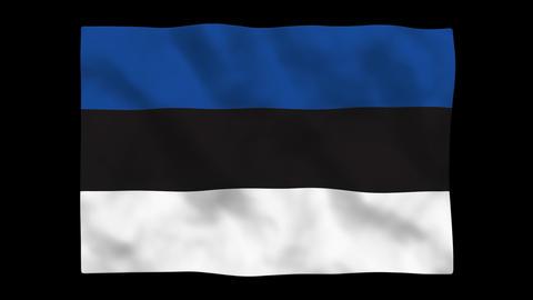 Flag A095 EST Estonia Stock Video Footage