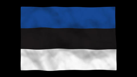 Flag A095 EST Estonia Stock Video Footage