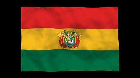 Flag A103 BOL Bolivia Stock Video Footage