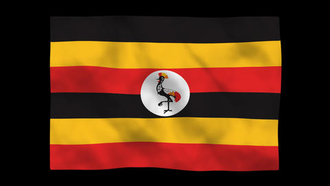 Flag A107 UGA Uganda Stock Video Footage
