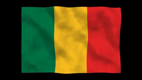 Flag A123 MLI Mali Stock Video Footage