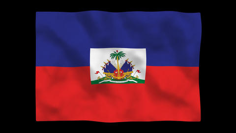 Flag A131 HTI Haiti Stock Video Footage