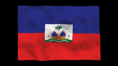 Flag A131 HTI Haiti Stock Video Footage