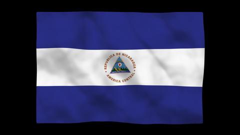 Flag A133 NIC Nicaragua Stock Video Footage