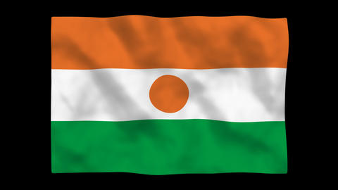 Flag A135 NER Niger Stock Video Footage