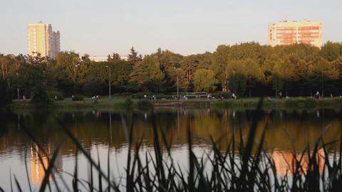Evening in park, lake, walking people Stock Video Footage