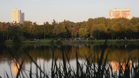 Evening in park, lake, walking people Footage