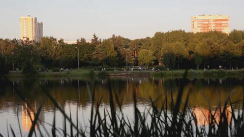 Evening in park, lake, walking people Footage