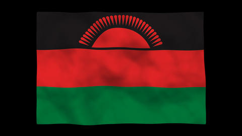 Flag A141 MWI Malawi Stock Video Footage