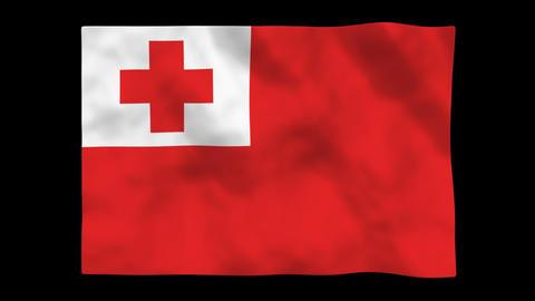 Flag A145 TON Tonga Stock Video Footage