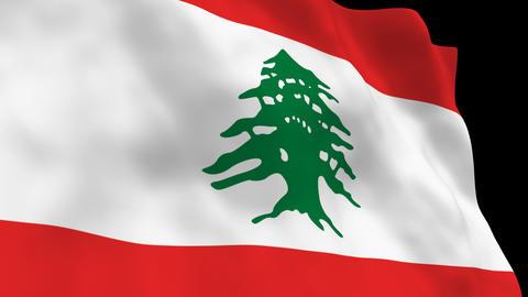 Flag B085 LBN Lebanon Stock Video Footage
