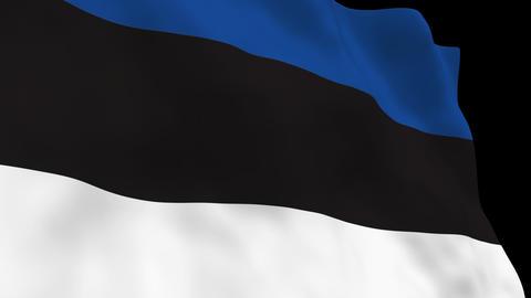 Flag B095 EST Estonia Stock Video Footage