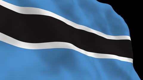 Flag B111 BWA Botswana Stock Video Footage