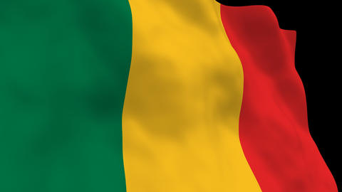 Flag B123 MLI Mali Animation