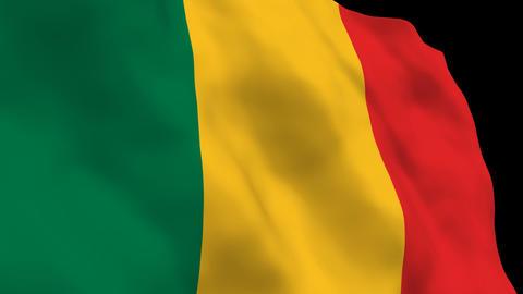Flag B123 MLI Mali Stock Video Footage
