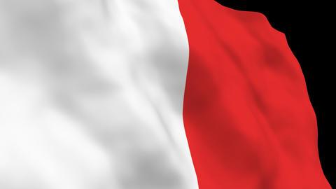Flag B127 MLT Malta Stock Video Footage