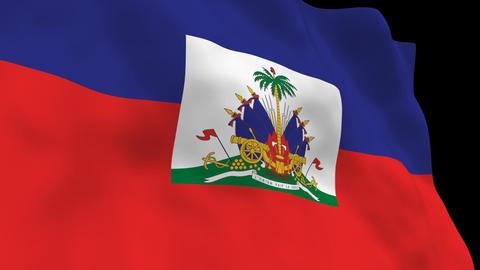 Flag B131 HTI Haiti Animation