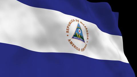 Flag B133 NIC Nicaragua Animation