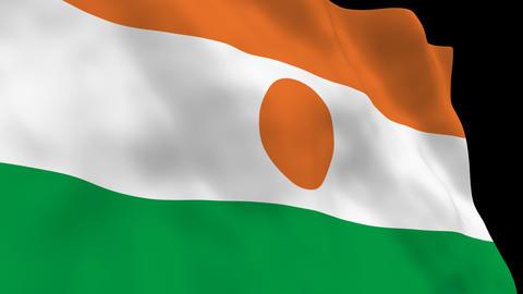 Flag B135 NER Niger Stock Video Footage