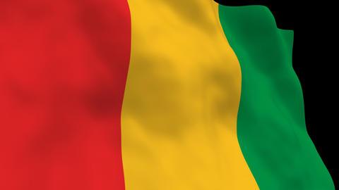 Flag B139 GIN Guinea Animation
