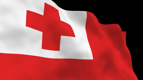 Flag B145 TON Tonga Stock Video Footage