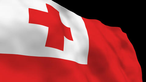 Flag B145 TON Tonga Stock Video Footage