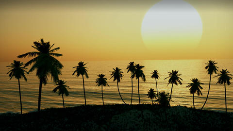 (1154) Tropical Island Sunset Palm Trees Ocean Waves Animation Animation