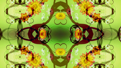 kaleidoflower Animation