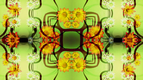 kaleidoflower Stock Video Footage