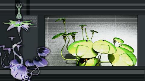 digiflower 2 remix Stock Video Footage